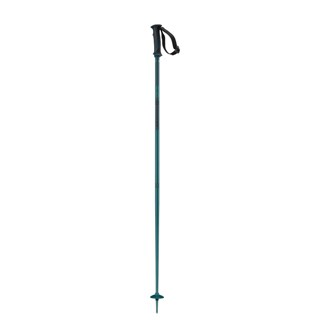 Salomon Arctic Ski Poles - Men's
