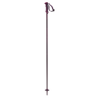 Salomon Arctic Lady Ski Poles - Women's