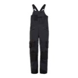 Spyder Coaches GTX Bib Pant - Men's